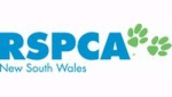RSPCA NSW's logo