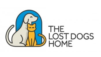 The Lost Dogs' Home's logo