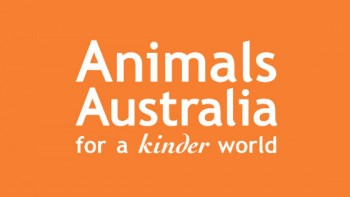 Animals Australia's logo