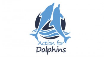 Action for Dolphins's logo