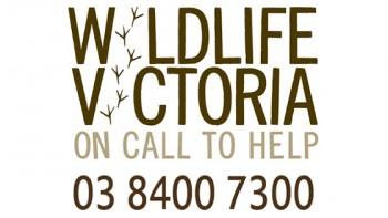 Wildlife Victoria's logo