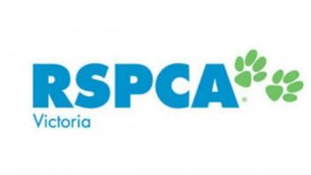 RSPCA (Victoria)'s logo