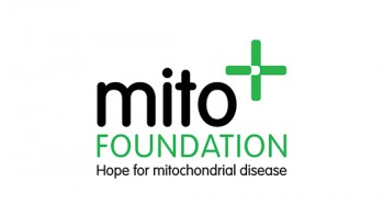 Mito Foundation's logo