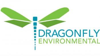 Dragonfly Environmental's logo