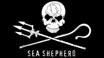 Sea Shepherd Australia's logo