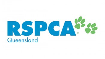 RSPCA Queensland's logo