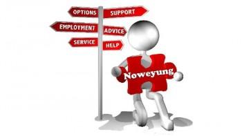 Noweyung Ltd's logo