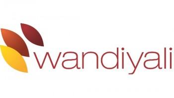 Wandiyali's logo
