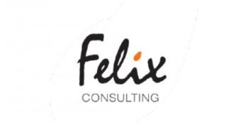 Felix Consulting Group Pty Ltd's logo