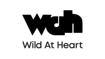 Wild at Heart Community Arts's logo