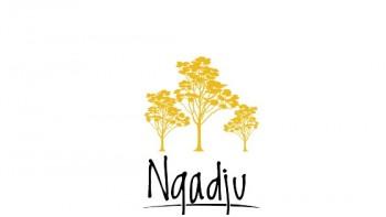 Ngadju Native Title Aboriginal Organisation (NNTAC) RNTBC's logo