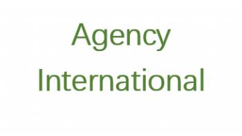Agency International's logo