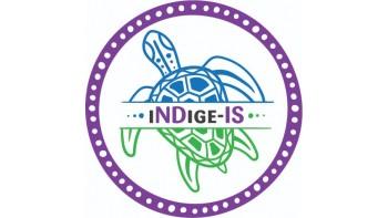 iNDige-IS's logo